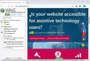 Screenshot of Wave Accessibility Tool for Google Chrome